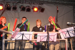 Boomwhackers (14)