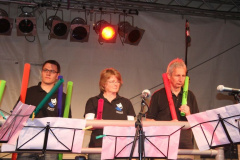 Boomwhackers (18)
